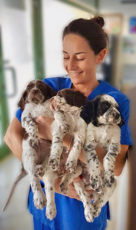 irene-veterinario-a-domicilio-firenze